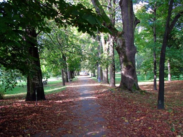 skorojesenný mestský park